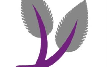 Rubus Blackberry Cascade & Willow Cone Basket