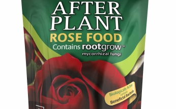 Gardening Extras - After Plant rose Food