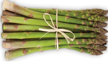 Asparagus 'Vittorio'- NEW (very early season)