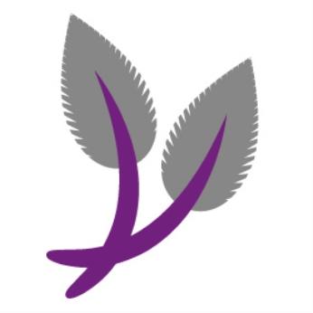 Snowdrop (Galanthus) nivalis and Flore pleno